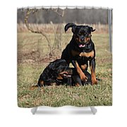 Hot Rot Shower Curtain