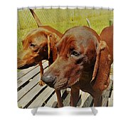 Hounds Shower Curtain