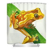 Hourglass Frog Shower Curtain