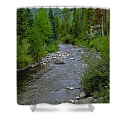 House By The Stream In Vail 2 Shower Curtain