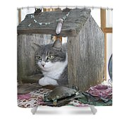 House Cat Shower Curtain