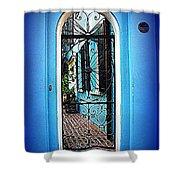House Door 4 In Charleston Sc  Shower Curtain by Susanne Van Hulst