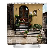 House Entrance  Shower Curtain