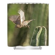 House Finch 0573 Shower Curtain