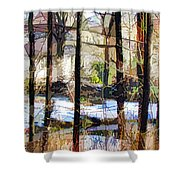 House Surrounded By Trees 2 Shower Curtain