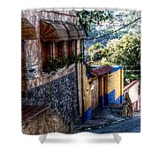 Houses Of Hatillo Shower Curtain