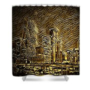 Houston Advantage II Shower Curtain