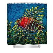 Hovering - Red Banded Wrasse Shower Curtain