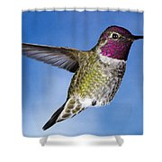 Hovering In Sky Shower Curtain