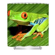 How About Some Real Color Shower Curtain