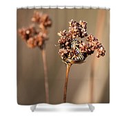 How Bees Keep Warm  Shower Curtain