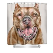 How Bout A Kiss  Shower Curtain