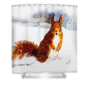 How Comedic Are Squirrels Shower Curtain