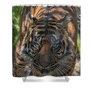 How Quickly Can You Run? Shower Curtain