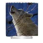 Howl At Dawn Shower Curtain