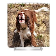 Howler 2 Shower Curtain