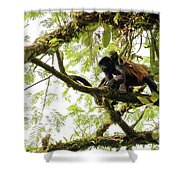 Howler Mother And Child Shower Curtain