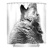 Howling Timber Wolf Shower Curtain