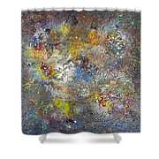 Hubble Vision Shower Curtain