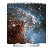Hubble's 24th Birthday Snap Of Monkey Head Nebula Shower Curtain