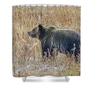 Huck's Snaggletooth Profile Shower Curtain