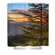 Hug A Tree. Shower Curtain