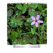 Huge Beauty In A Small Wildflower Shower Curtain