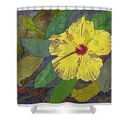 Hula Girl Hibiscus Shower Curtain