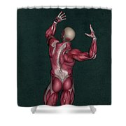 Human Anatomy 20 Shower Curtain