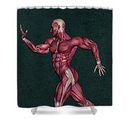 Human Anatomy 29 Shower Curtain