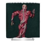 Human Anatomy 31 Shower Curtain