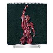 Human Anatomy 37 Shower Curtain