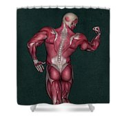 Human Anatomy 9 Shower Curtain