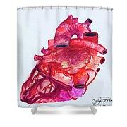 Human Heart Pa Shower Curtain