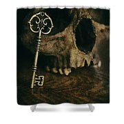 Human Skull With Vintage Key Shower Curtain