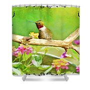 Humminbird Attitude - Digital Paint 3 Shower Curtain
