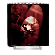 Humming Bird Feeding Tim. Shower Curtain
