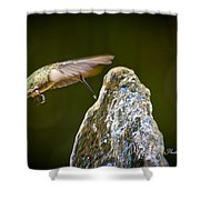 Humming Bird Hovering Over Water Fountain Getting A Drink Shower Curtain