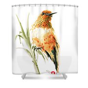 Hummingbird 2 Shower Curtain