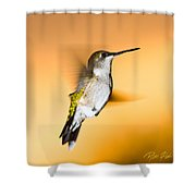 Hummingbird Agains The Sunset Shower Curtain