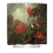 Hummingbird And Passionflowers Shower Curtain