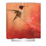 Hummingbird And Peach Hibiscus Shower Curtain