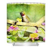 Hummingbird Attitude - Digital Paint 1 Shower Curtain