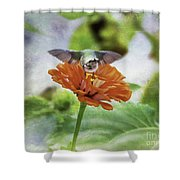 Hummingbird Bow Shower Curtain