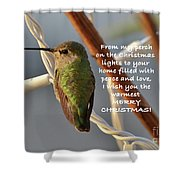 Hummingbird Christmas Card Shower Curtain