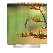 Hummingbird Drinking Nectar Shower Curtain