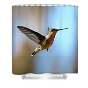 Hummingbird Friend Shower Curtain