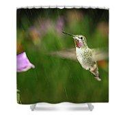 Hummingbird Hovering In Rain Shower Curtain