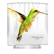 Hummingbird I Shower Curtain