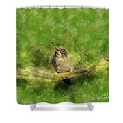 Hummingbird In A Tree Shower Curtain